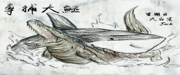 簡介-專搏大鱷